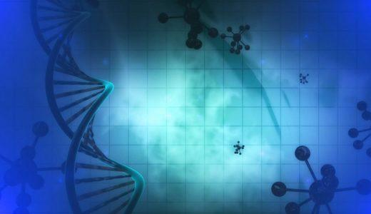 遺伝子検査&健康・栄養カウンセリングを受けてみた体験談